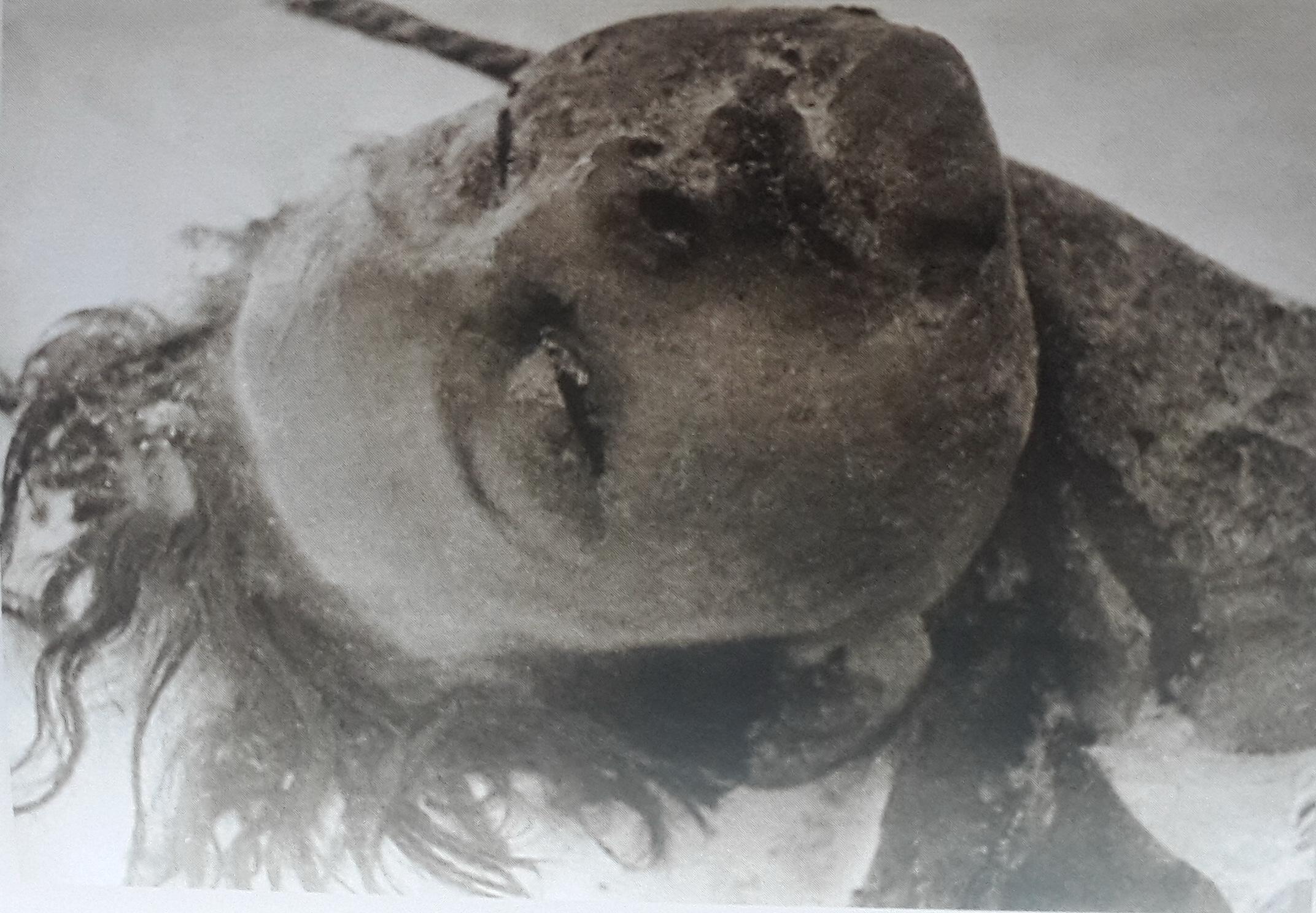 24 января 1942 года. Петрищево. Опознание тела казнённой партизанки